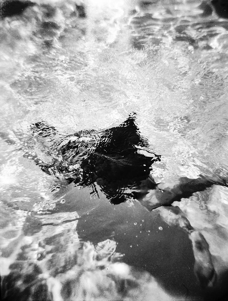 © Untitled VIIII by Jordan Kirkpatrick